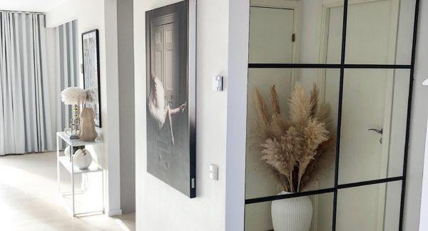 Spegelskjutdörr